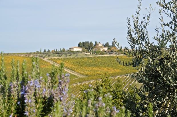 Paysage_Toscane