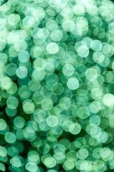 inspiration-glitter-71