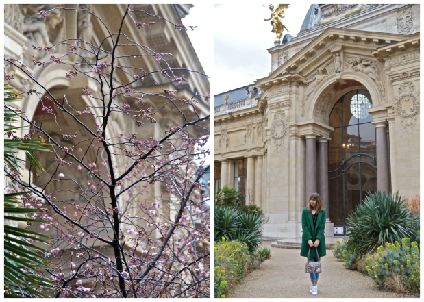 Petit-Palais-Paris-secret.png