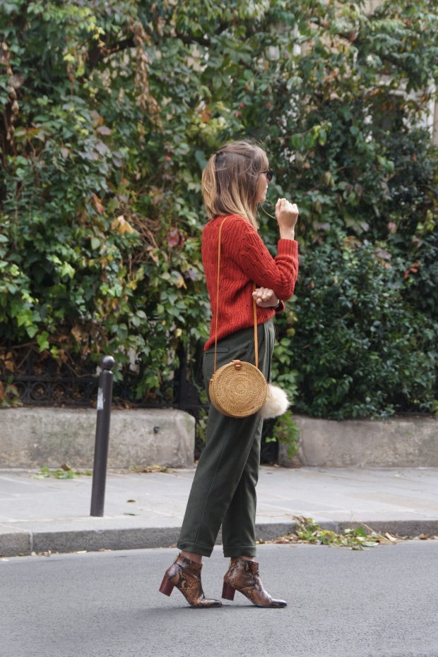 Look Automne Fashion Blog paris (11)