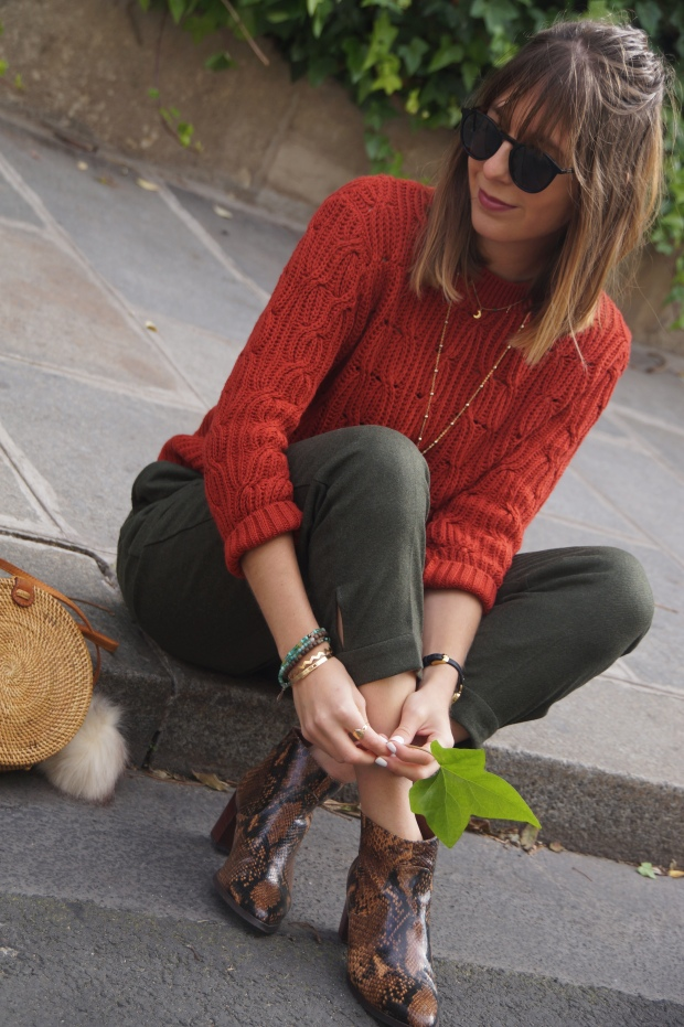Look Automne Fashion Blog paris (17)